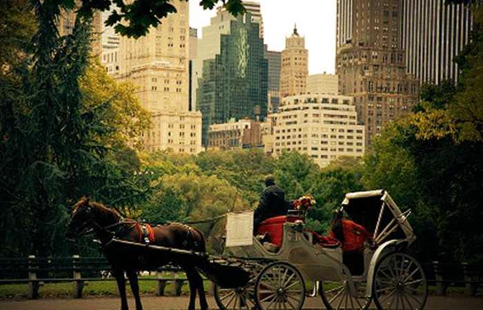 demande mariage new york