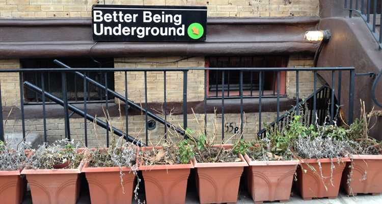 Better Being underground new york