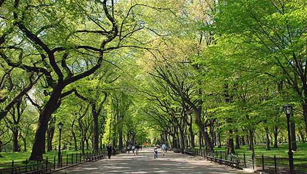 Visiter Central Park : The Mall