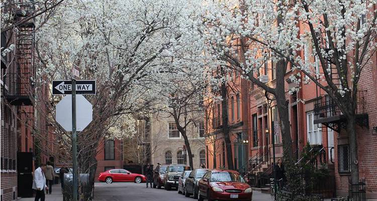Printemps a New York