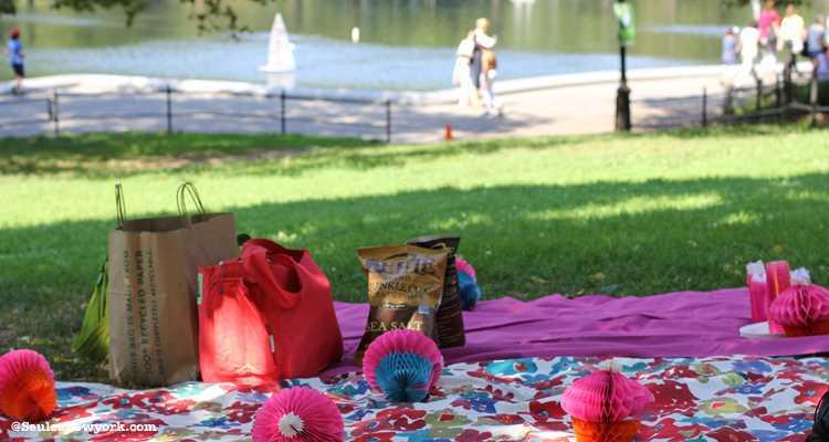 Central Park new york pique nique